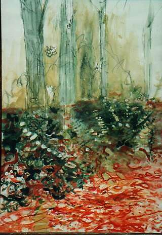 morningforest by gemsara