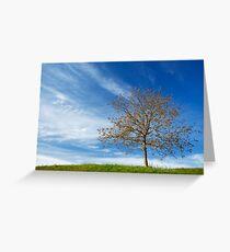 Spring Landscapes Greeting Card
