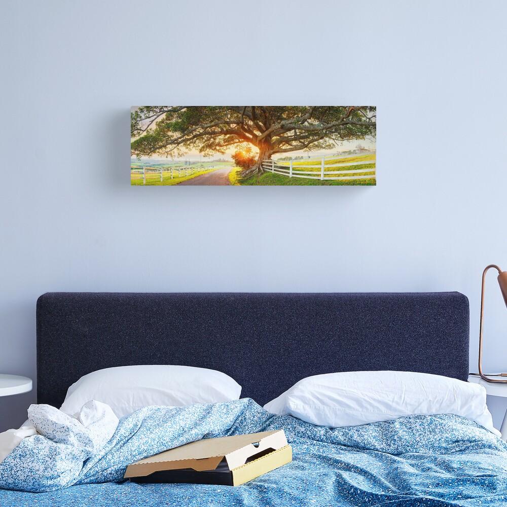 Road to Kiama, New South Wales, Australia Canvas Print