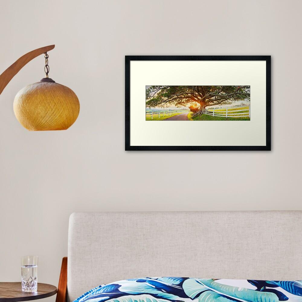 Road to Kiama, New South Wales, Australia Framed Art Print