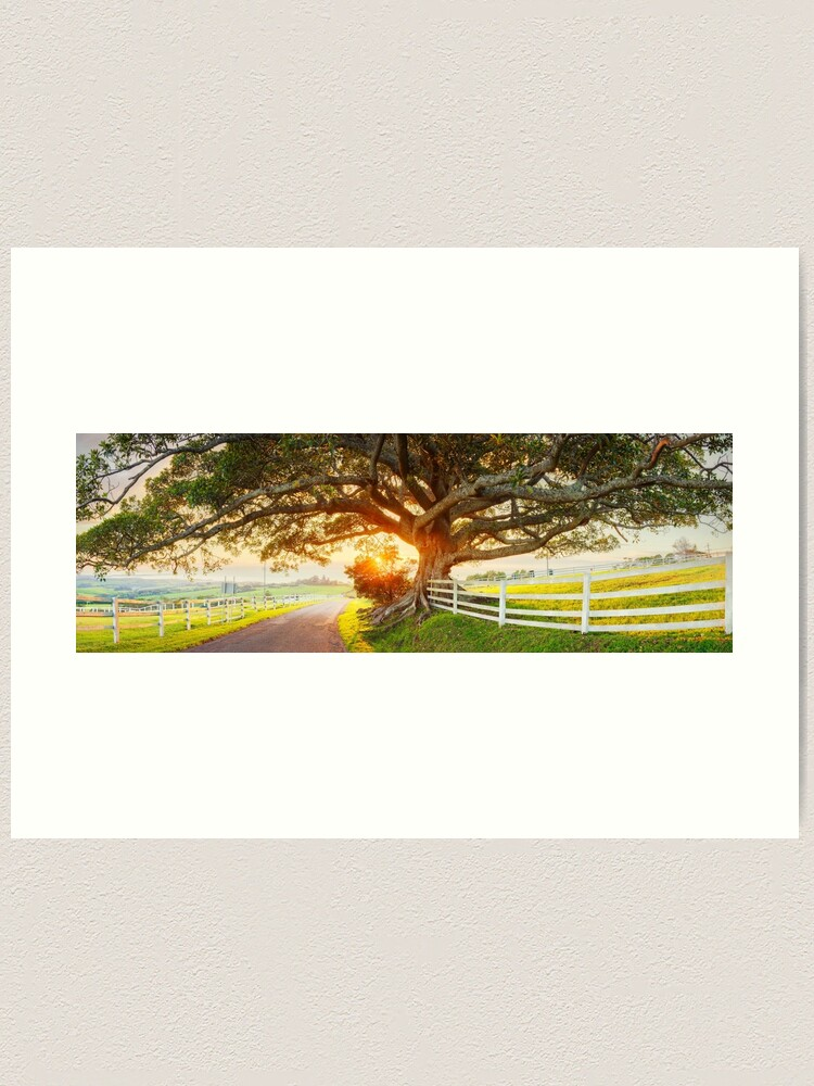 Alternate view of Road to Kiama, New South Wales, Australia Art Print