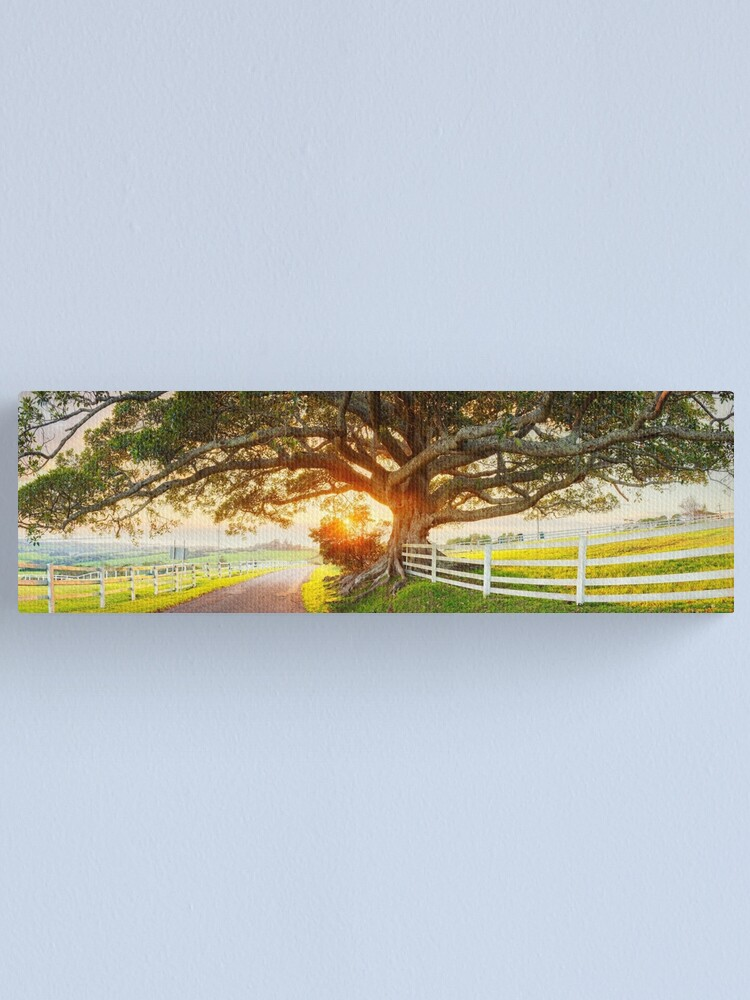Alternate view of Road to Kiama, New South Wales, Australia Canvas Print