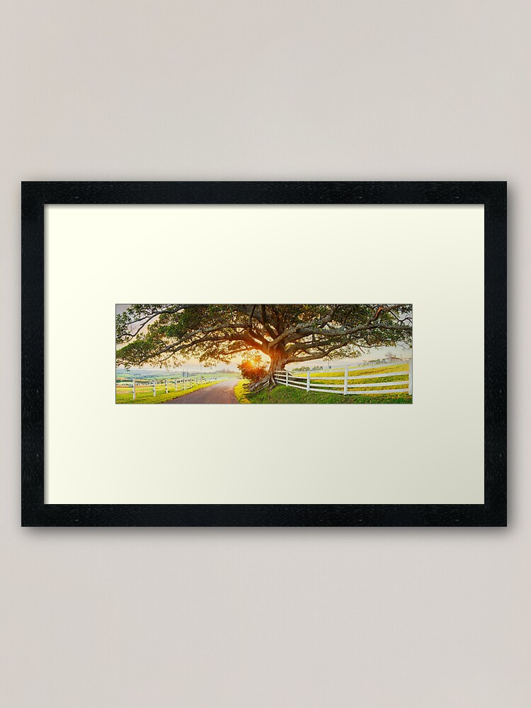 Alternate view of Road to Kiama, New South Wales, Australia Framed Art Print
