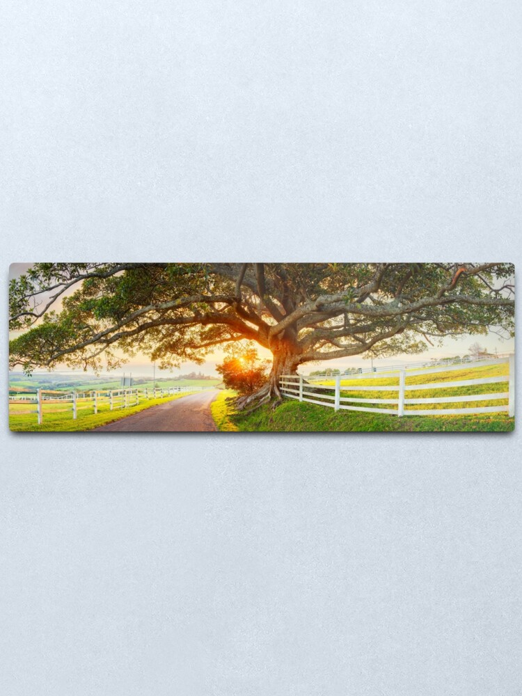 Alternate view of Road to Kiama, New South Wales, Australia Metal Print
