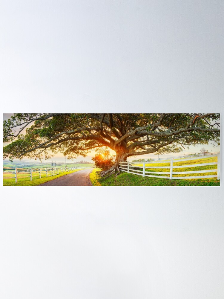 Alternate view of Road to Kiama, New South Wales, Australia Poster