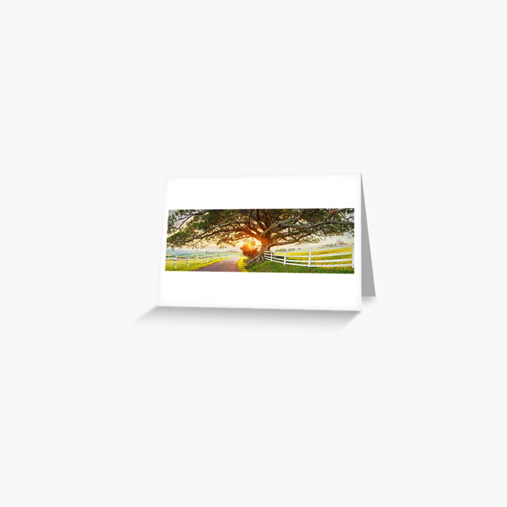 Road to Kiama, New South Wales, Australia Greeting Card