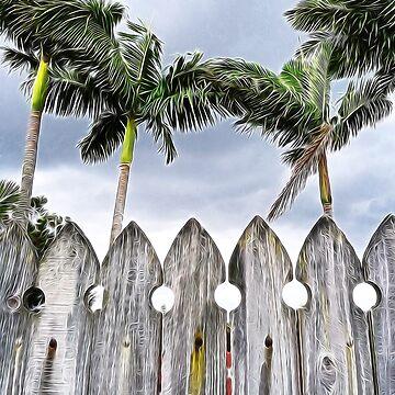Surburban Palms by PaulWebster