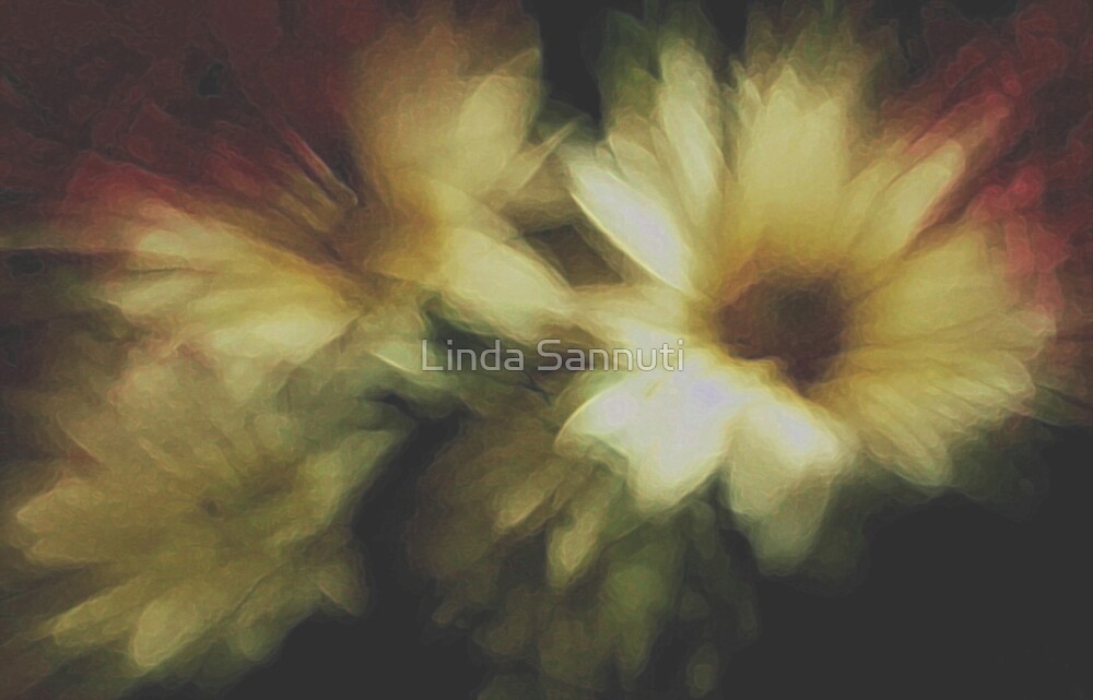 flower art by Linda Sannuti