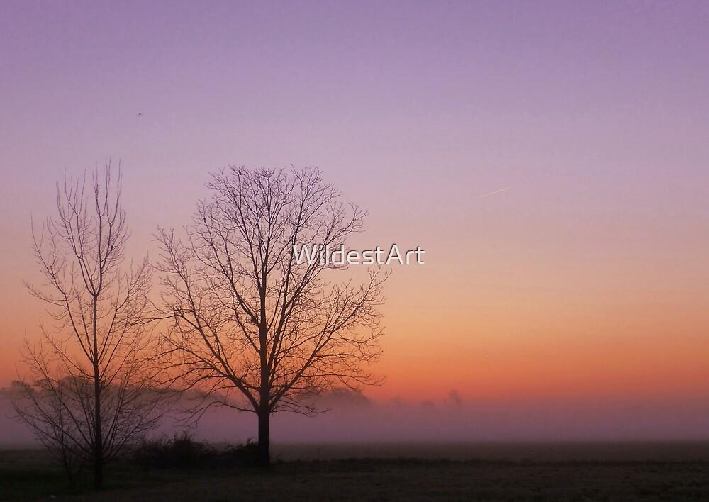 Purple Sunrise by WildestArt