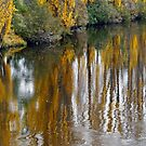 Autumn on the River by Harry Oldmeadow