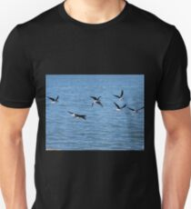 NZ Pied Stilts in Flight Unisex T-Shirt