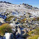 Alpine Stream by Harry Oldmeadow