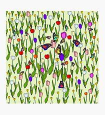 Floral Butterflies Photographic Print