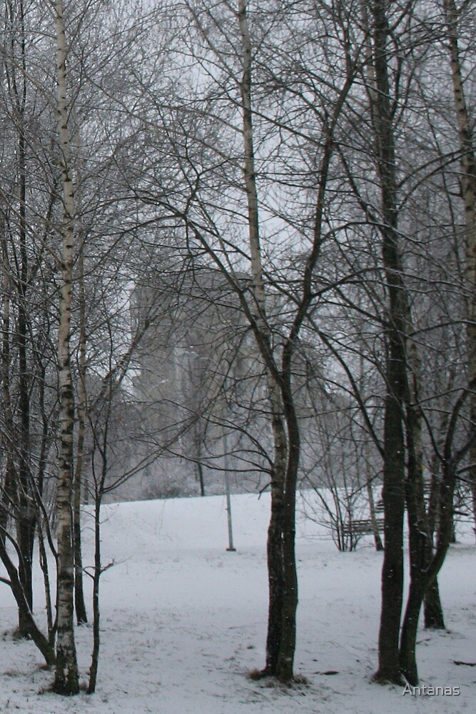 Winter Time in sity by Antanas