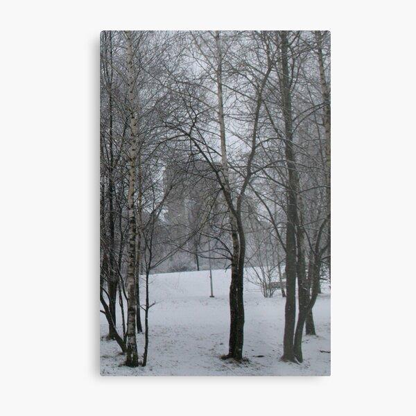 Winter Time in sity Metal Print