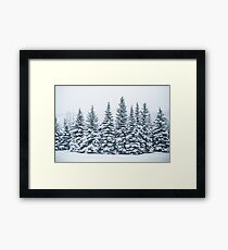 The Crown Of Winter Framed Print