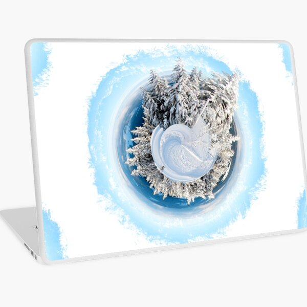 Winter World 9 Laptop Skin