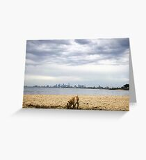 City Views Greeting Card