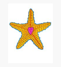Love Starfish Photographic Print