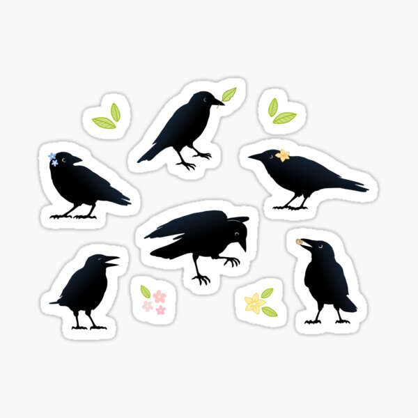 Playful crows Sticker
