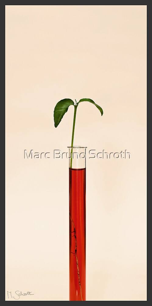 Artificial Life. by Marc Bruno Schroth