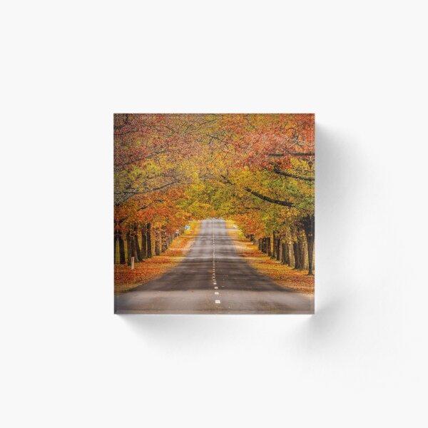 Honour Avenue Acrylic Block