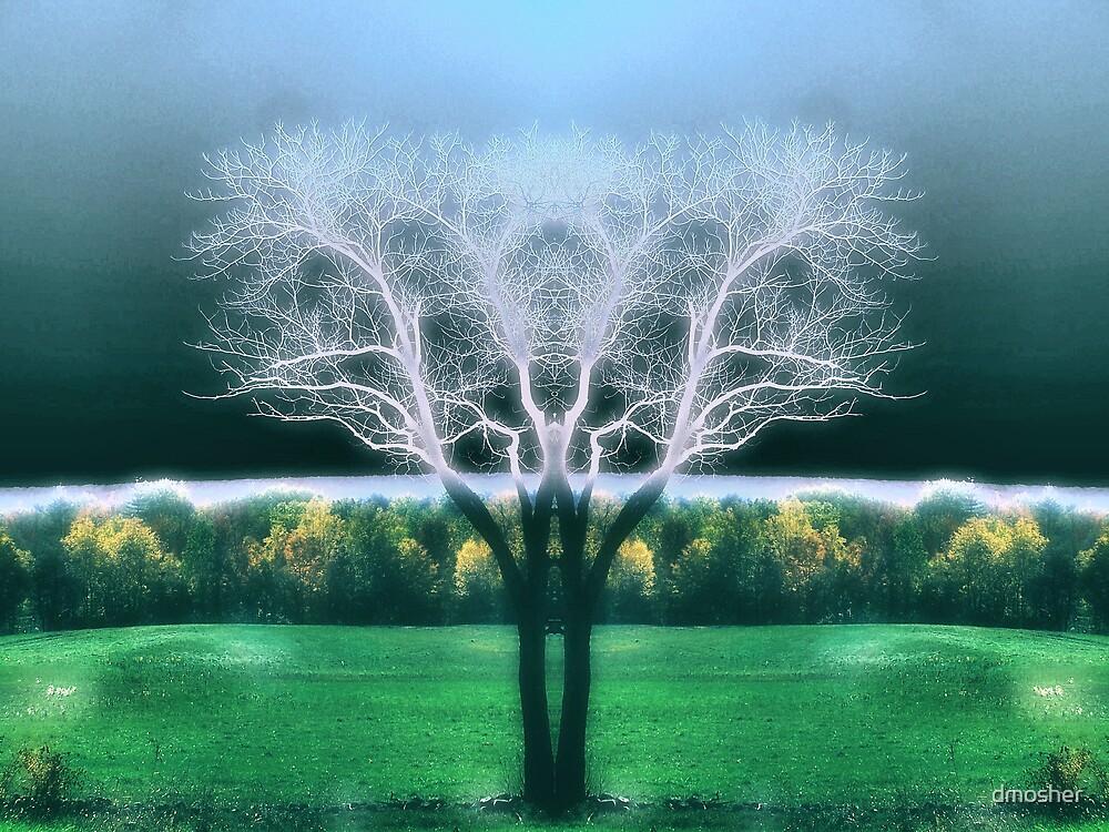 Seasons by dmosher