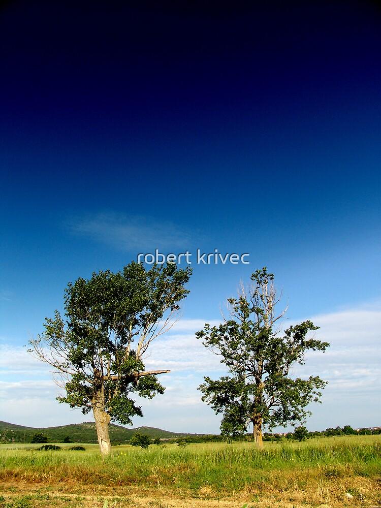 mine field by robert krivec