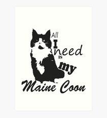 Maine coon Art Print