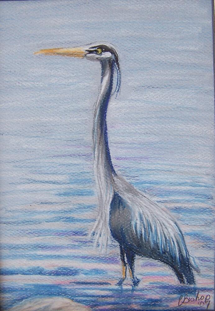 Great Blue Heron by Carolyn Bishop