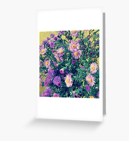 Dendranthema Greeting Card