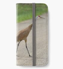 A Family Affair iPhone Wallet/Case/Skin