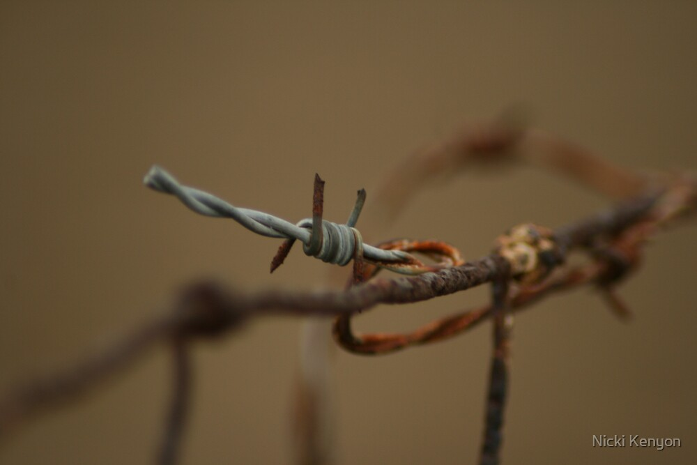 Barbed wire by Nicki Kenyon