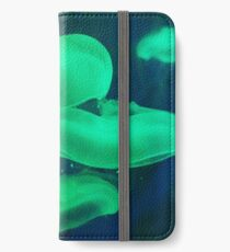 Jellyfishes iPhone Wallet