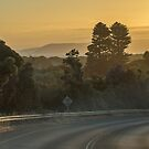 The Great Ocean Road, Victoria, Australia by LisaRoberts