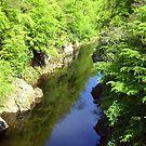 River Tummel by Tom Gomez