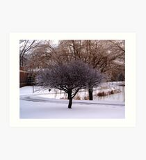 Icy Tree Art Print