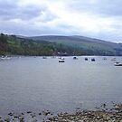 Loch Tay by Tom Gomez