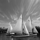 Sailing Boats by John Violet
