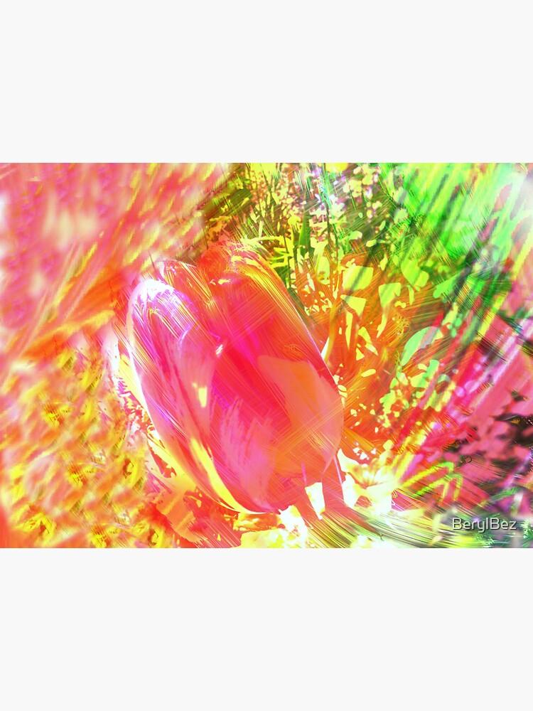 Springtime Tulip by BerylBez