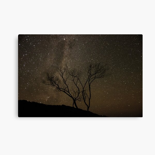 Astrophotography in Wilsons Promontory National Park Canvas Print