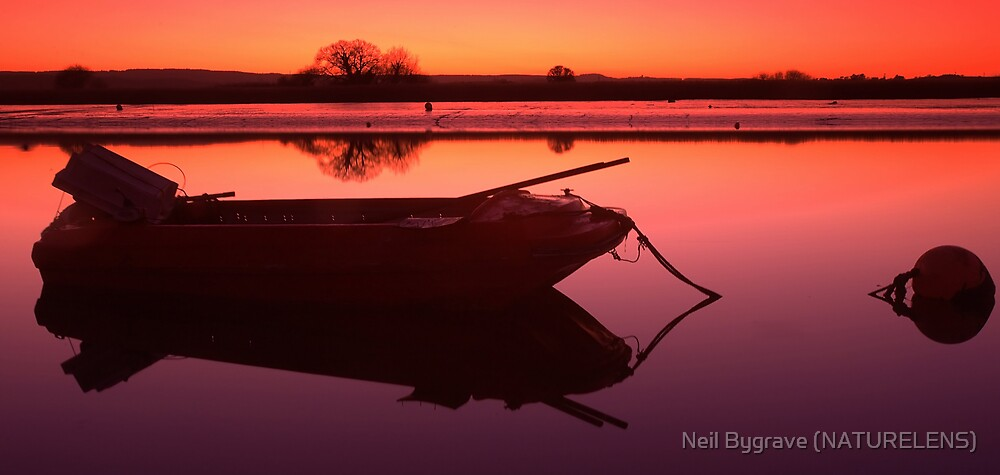 Topsham by Neil Bygrave (NATURELENS)