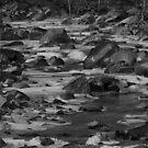 Rocks In The Creek #3 by RockyWalley