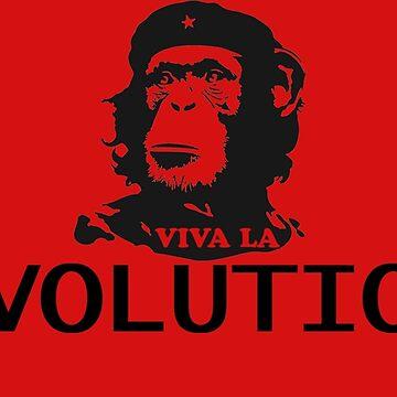 Evolution von LionsCrown