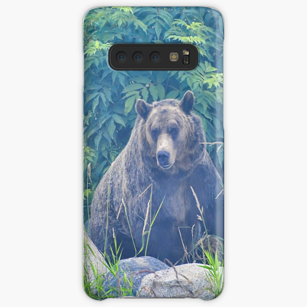 Grizzly in the Mist Case & Skin for Samsung Galaxy