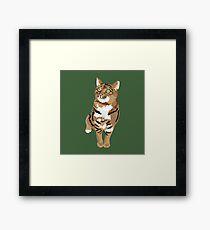 Gingerbread Framed Print