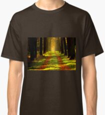 Beautiful Tree Lined Road in a Forest Classic T-Shirt