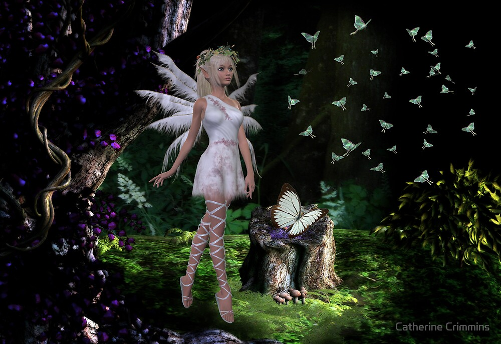 Butterfly Forest by Catherine Crimmins