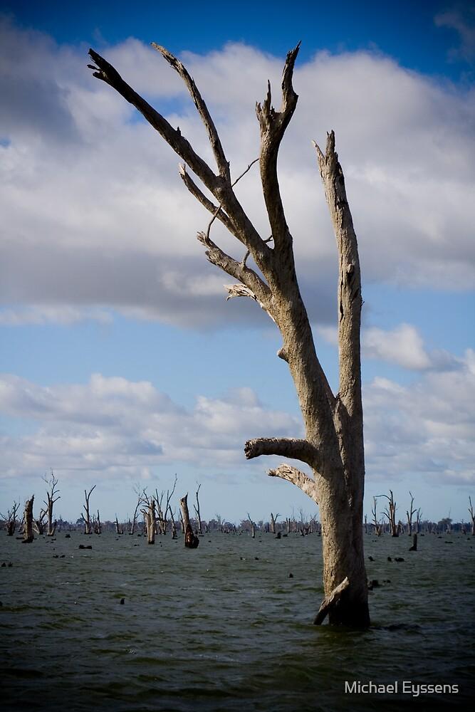 Lake Mulwala NSW by Michael Eyssens