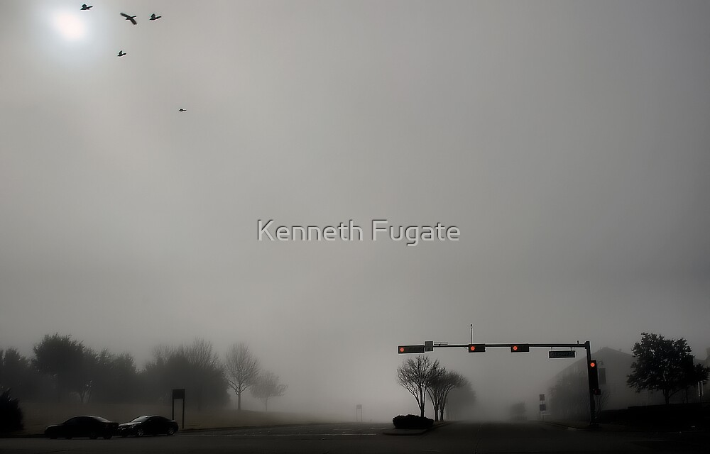 Birds with IFR by Kenneth Fugate